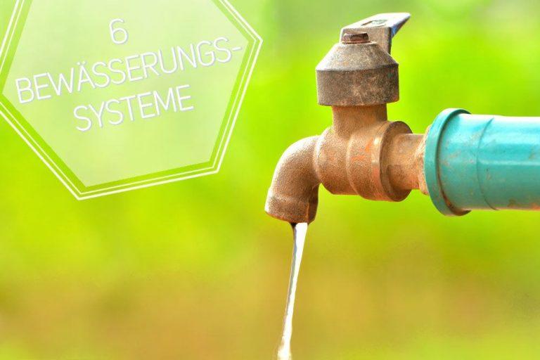 Bewässerungssysteme für Pflanzen