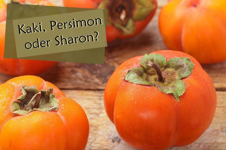 Kaki, Sharon oder Persimon