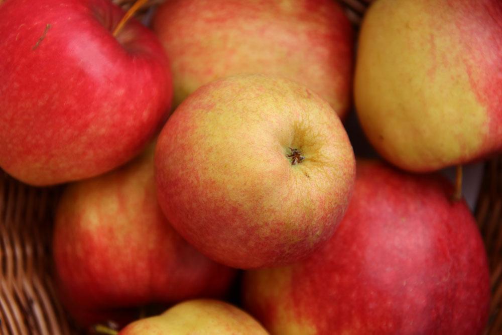Rewena Apfel
