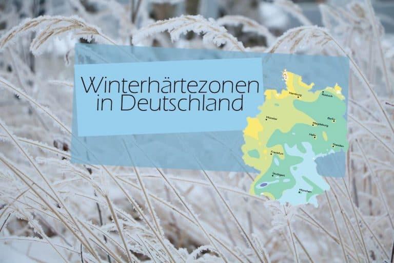 Winterhärtezonen