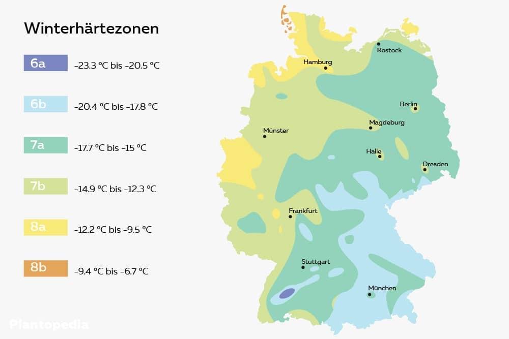 Winterhärtezonen in Deutschland
