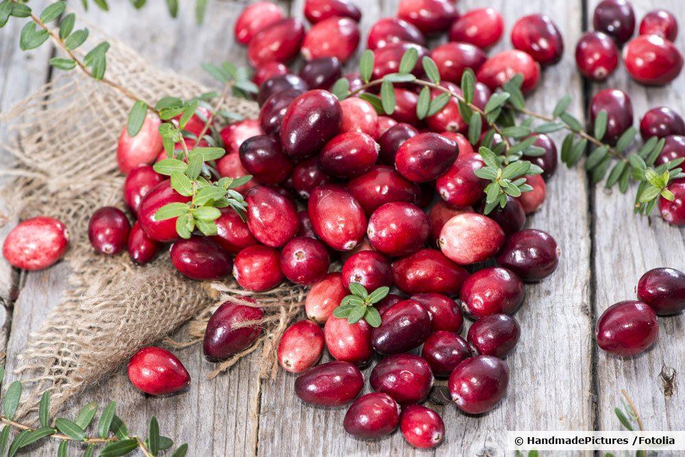 Cranberries, Vaccinium macrocarpon