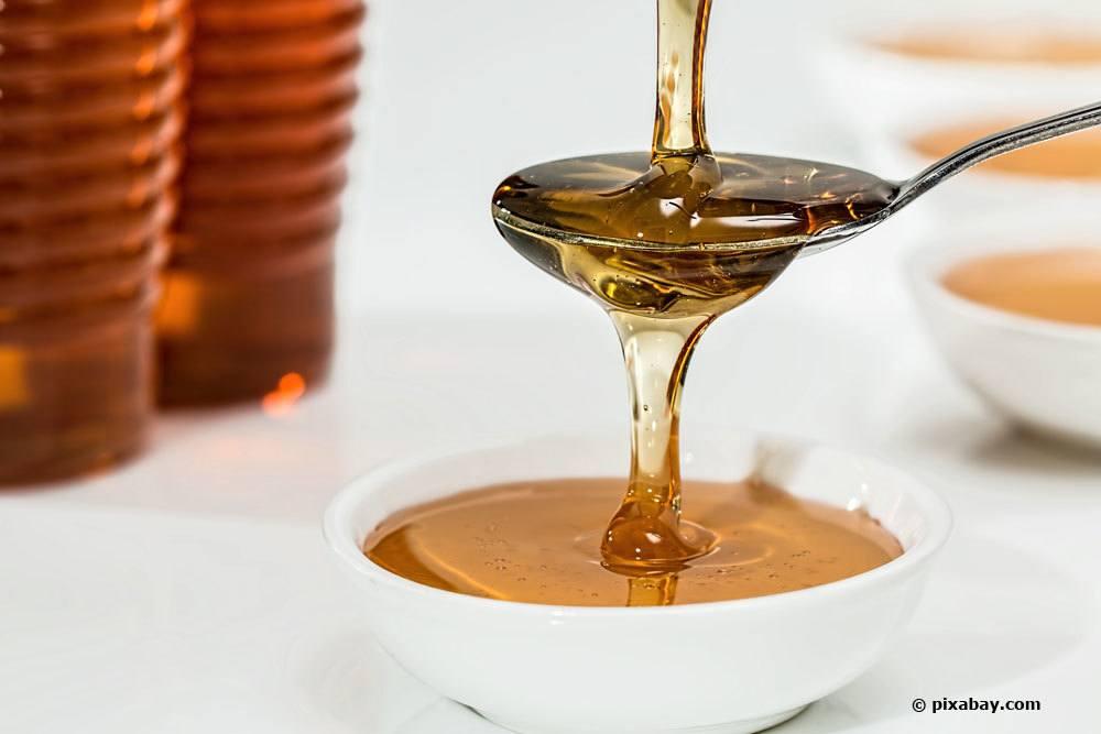 Honig als Futter für Marienkäfer im Winter
