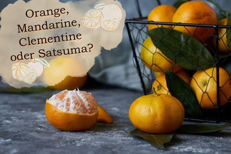 Mandarinen, Clementinen, Satsuma oder Orange?
