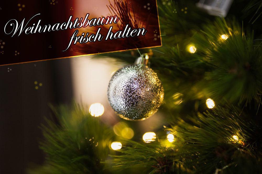 weihnachtsbaum frisch halten 4 tipps f r den tannenbaum. Black Bedroom Furniture Sets. Home Design Ideas