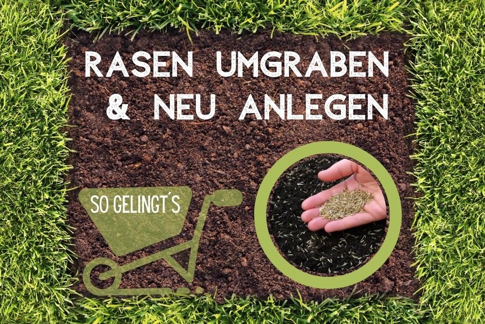 Rasen umgraben, neu anlegen