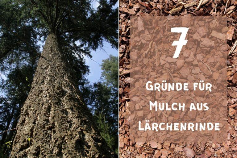 Lärchenrindenmulch - Titel