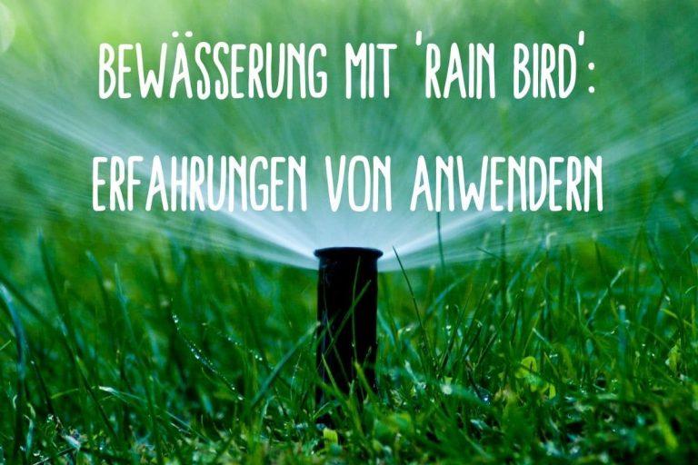Bewässerung Rain Bird - Titel