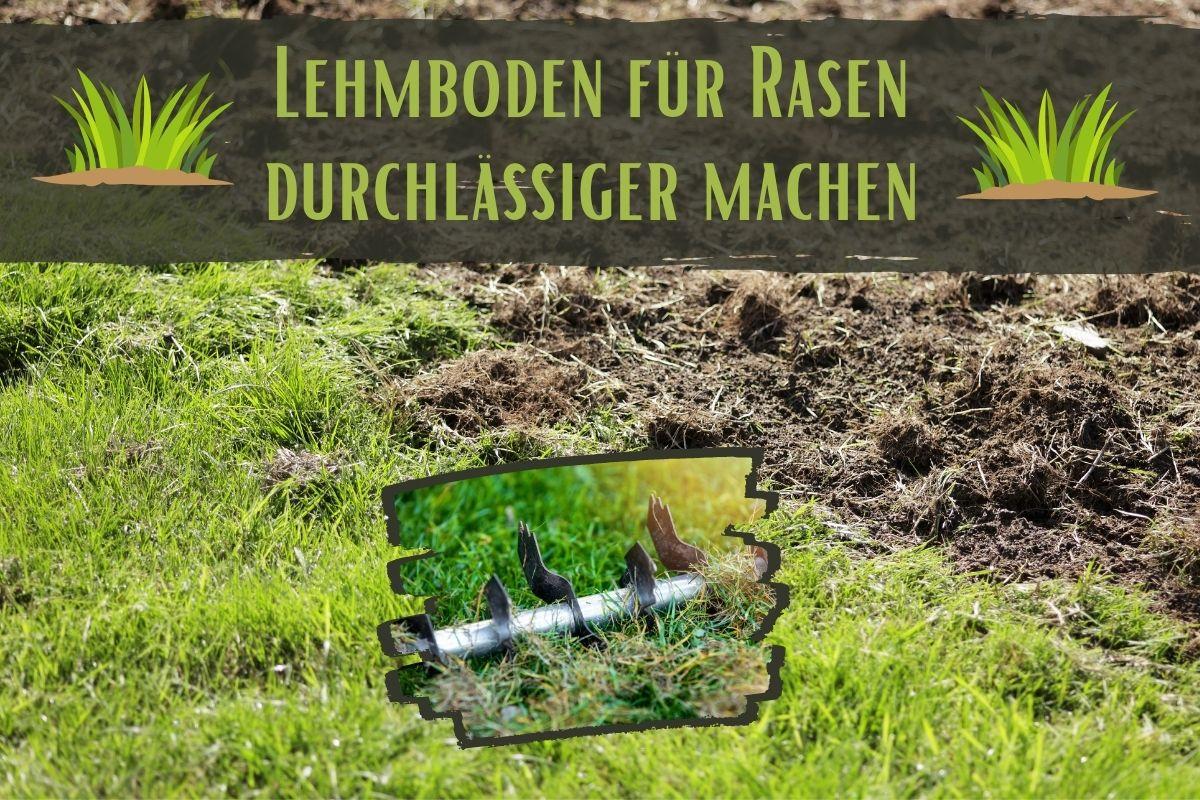 Lehmboden durchlässiger - Titel