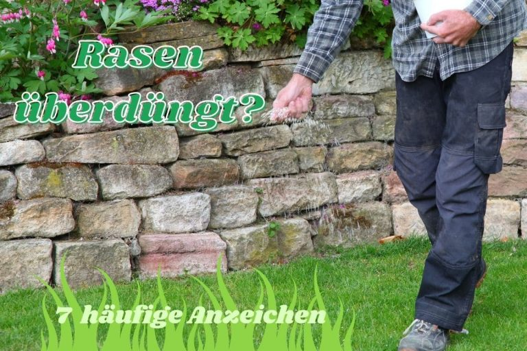 Rasen überdüngt - Titel