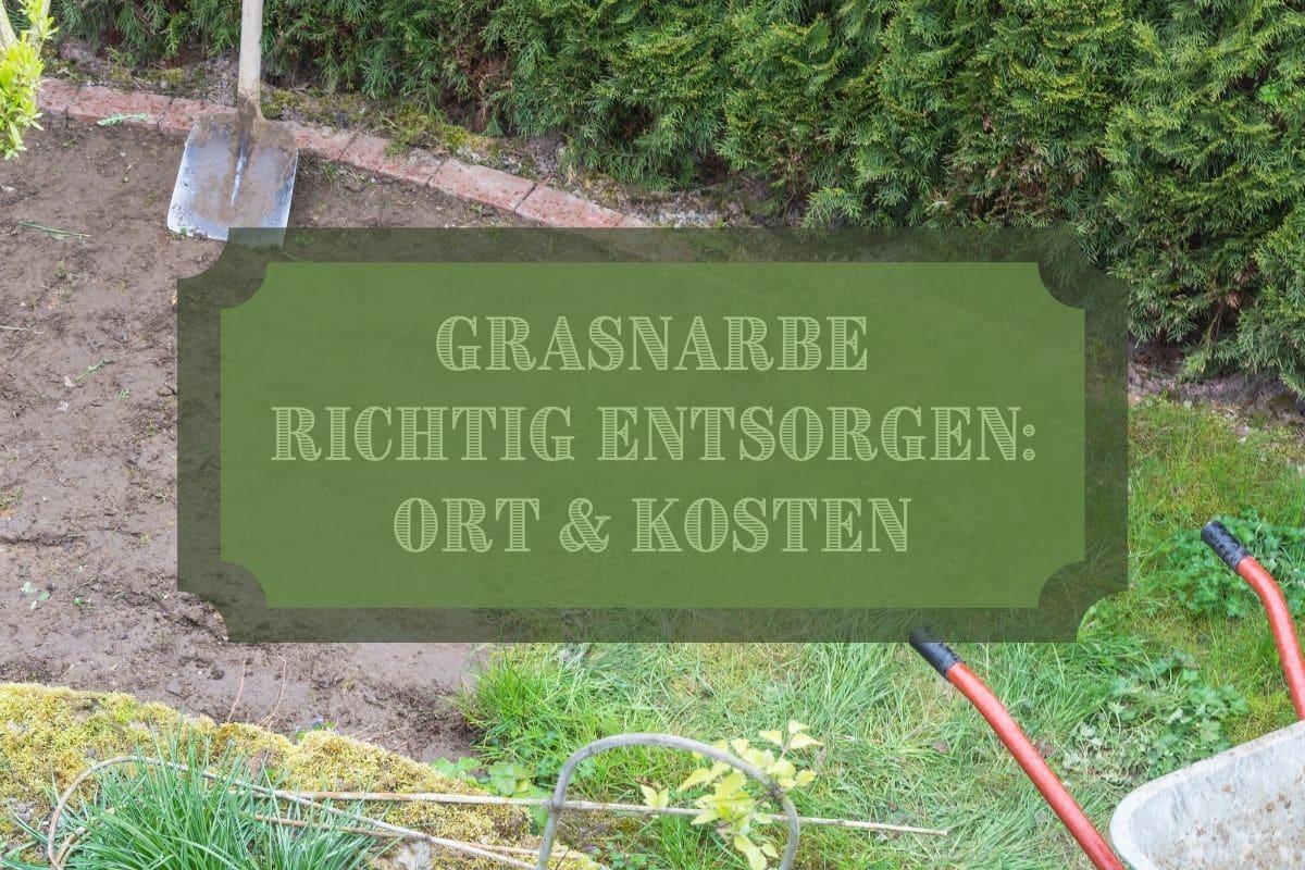 Grasnarbe entsorgen - Titel