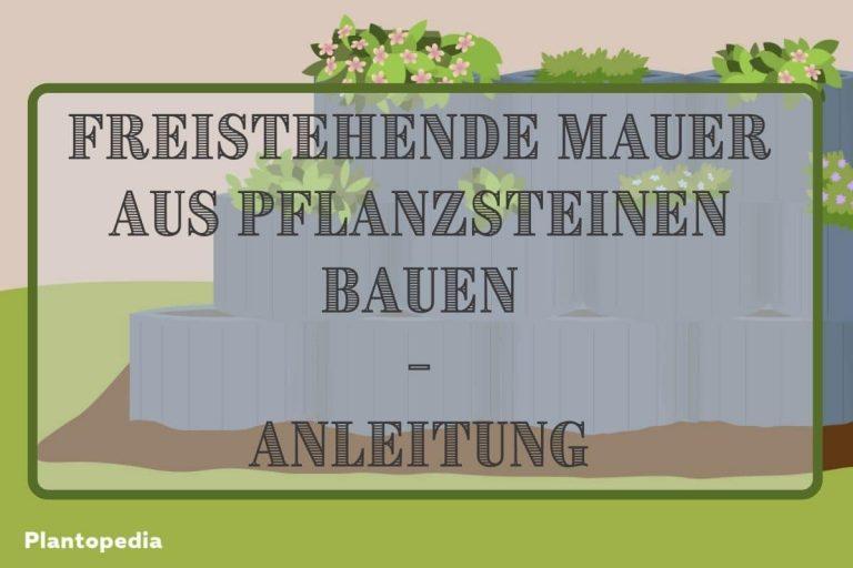 Mauer aus Pflanzsteinen - Titel