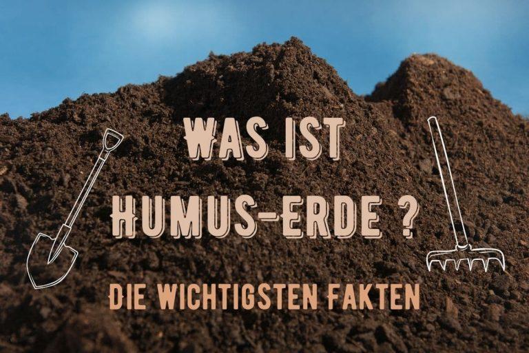 Was ist Humus-Erde - Titel