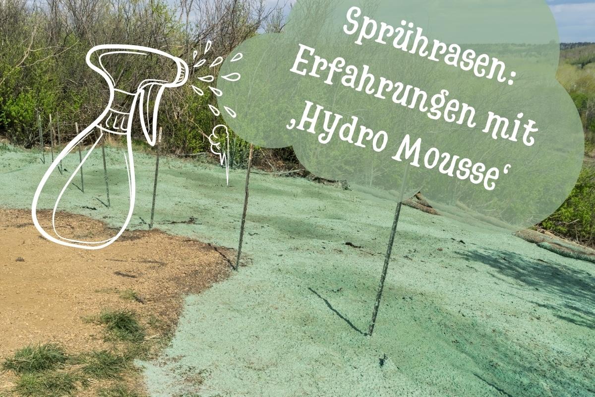 Erfahrungen mit Hydro Mousse - Titel