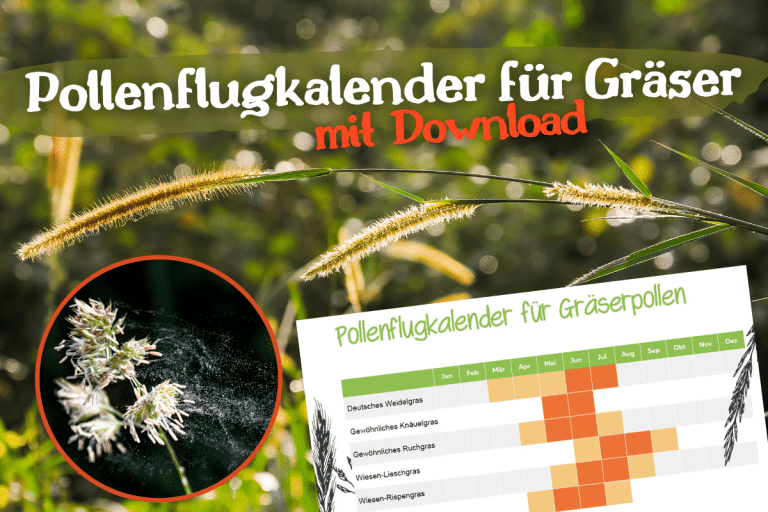 Titel Online Gräserpollen Flugkalender Download