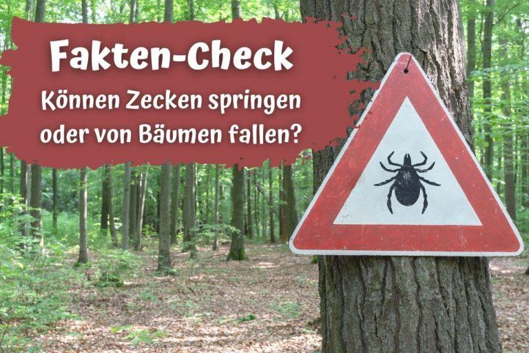 Können Zecken springen - Warnschild vor Zecken im Wald
