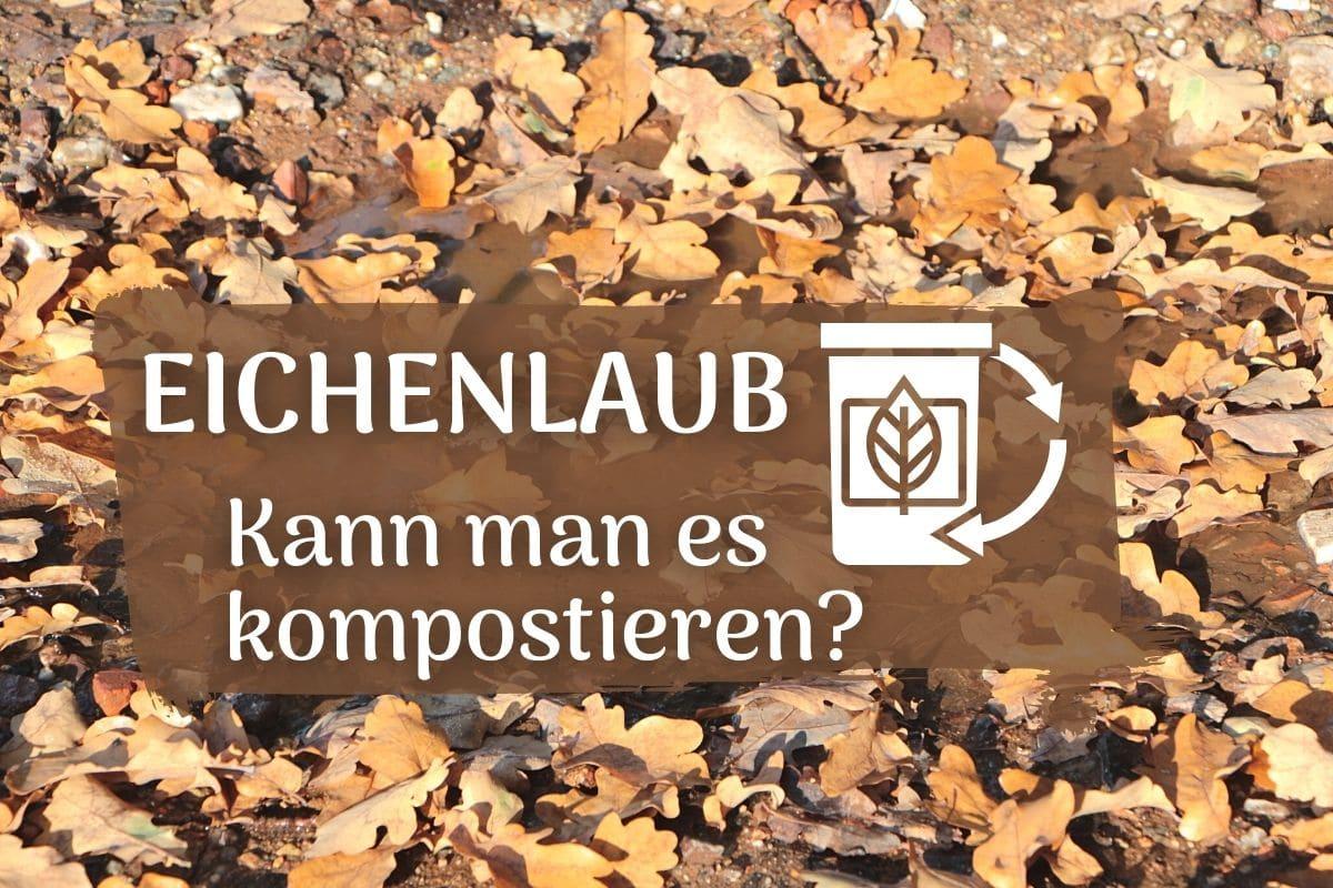 Eichenlaub kompostieren