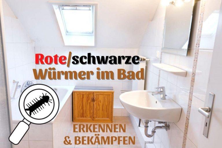 Rote oder schwarze Würmer im Bad