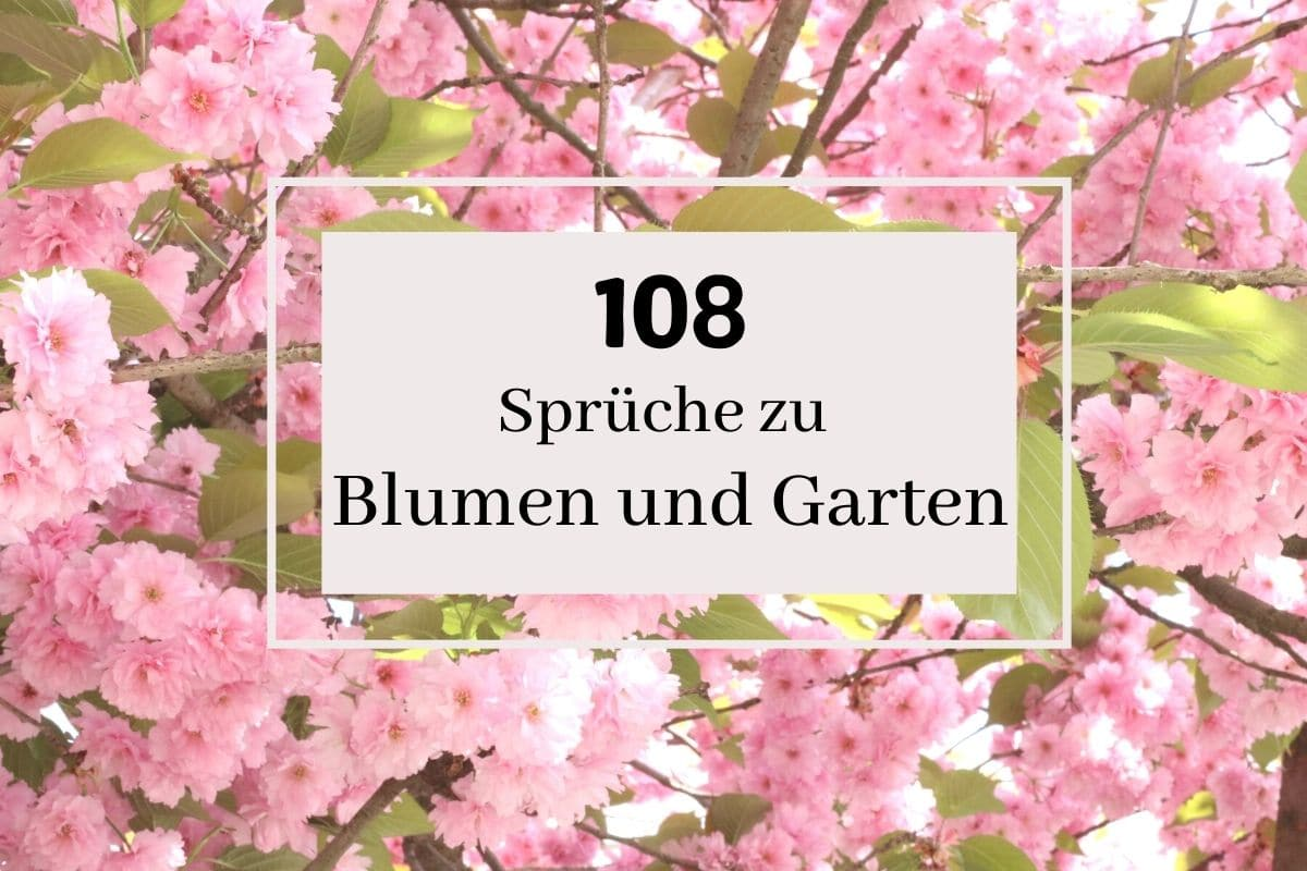 schöne Sprüche zu Garten und Blumen