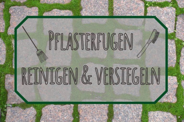 Pflasterfugen reinigen und versiegeln - Titel