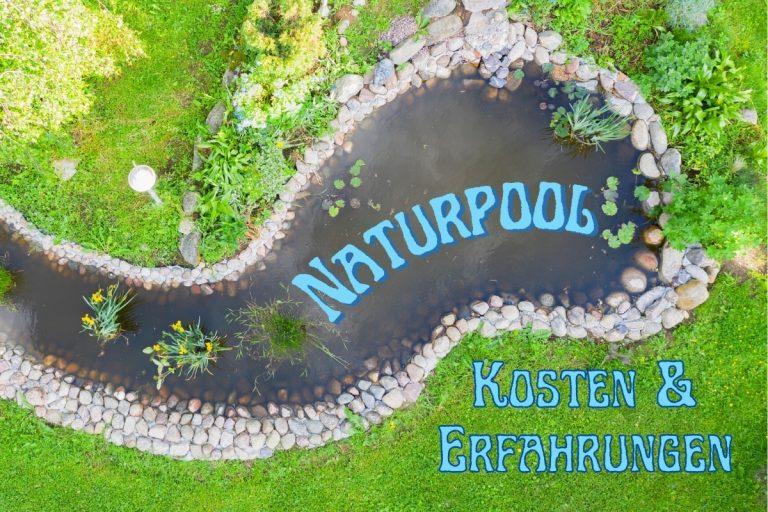 Naturpool Kosten und Erfahrungen - Titel