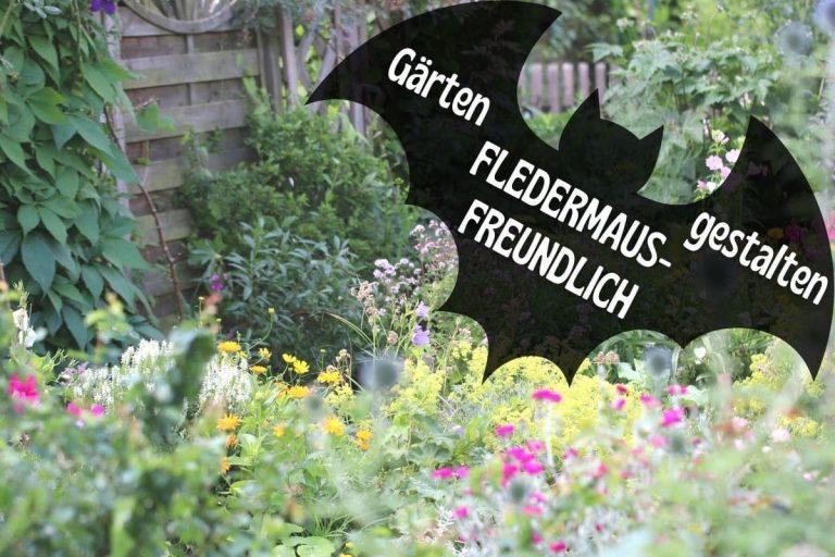 Fledermäuse im Garten anlocken