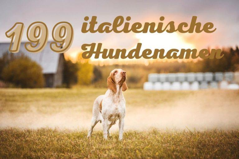 schöne italienische Hundenamen