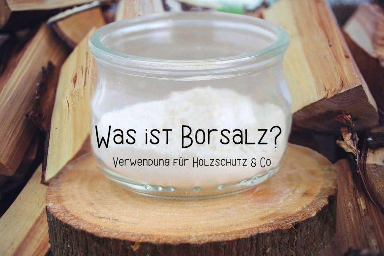 Was ist Borsalz? | Verwendung für Holzschutz & Co - Titelbild