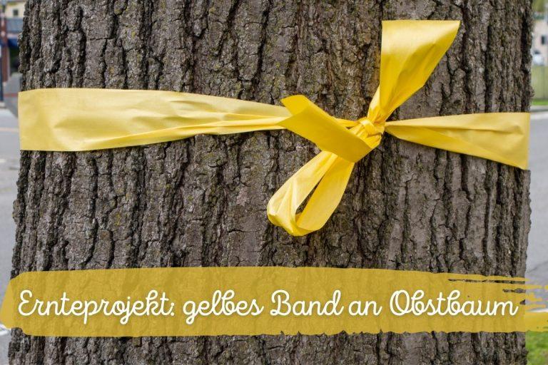 Ernteprojekt: gelbes Band an Obstbaum | Bedeutung - Titelbild