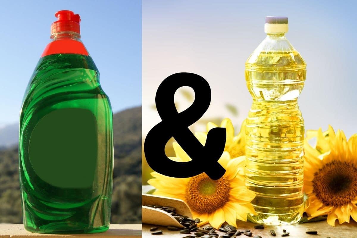 Speiseöl & Spülmittel