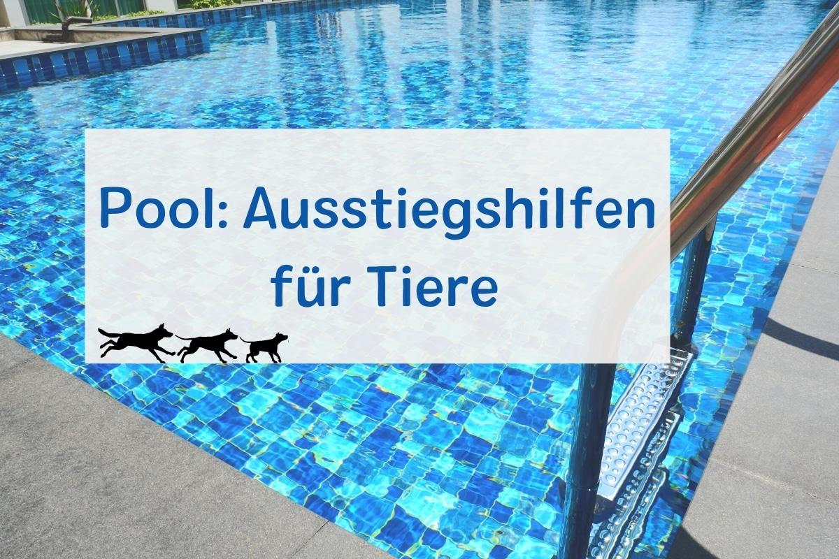 Pool-Ausstiegshilfen für Tiere