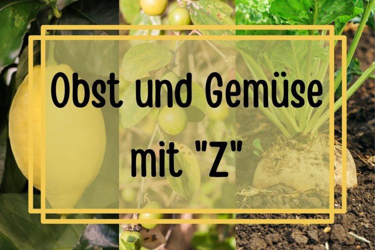 19 Obst, Früchte und Gemüse mit Z am Anfang - Titelbild