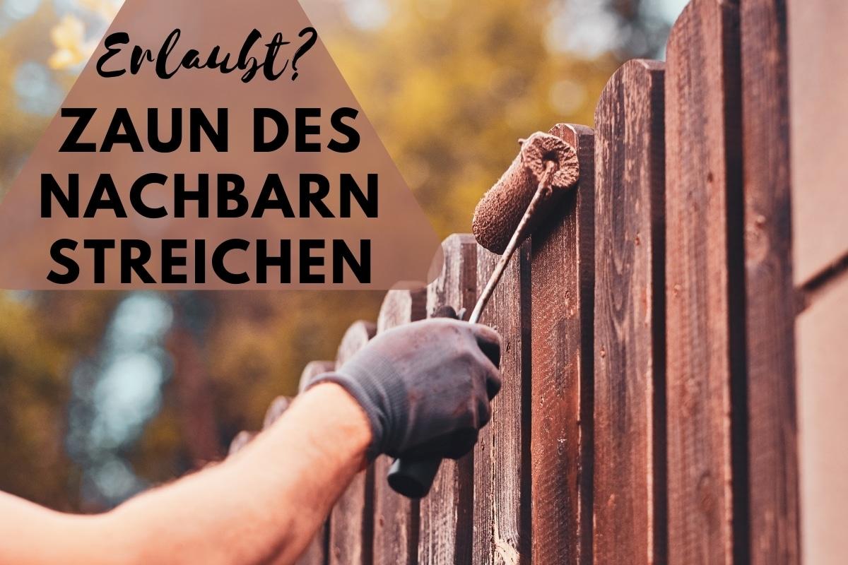Darf ich den Zaun meines Nachbarn streichen? - Titelbild