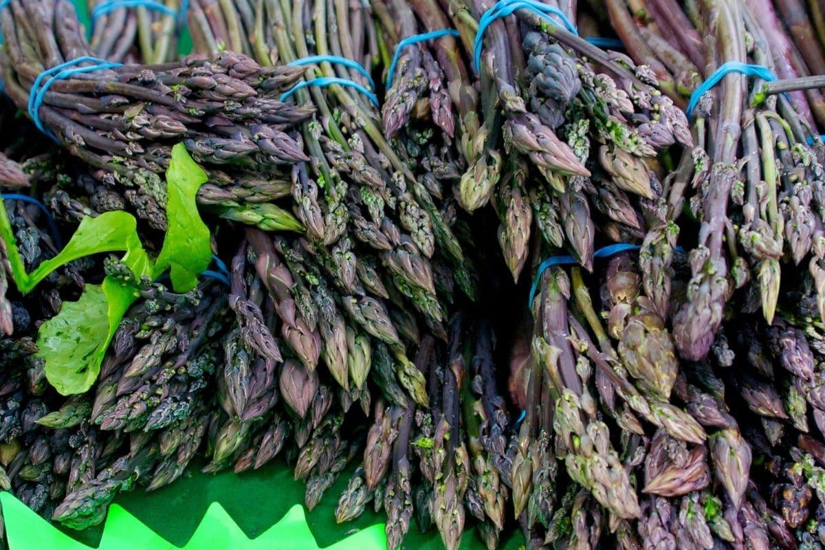 Gemüse mit V: Violetter Spargel