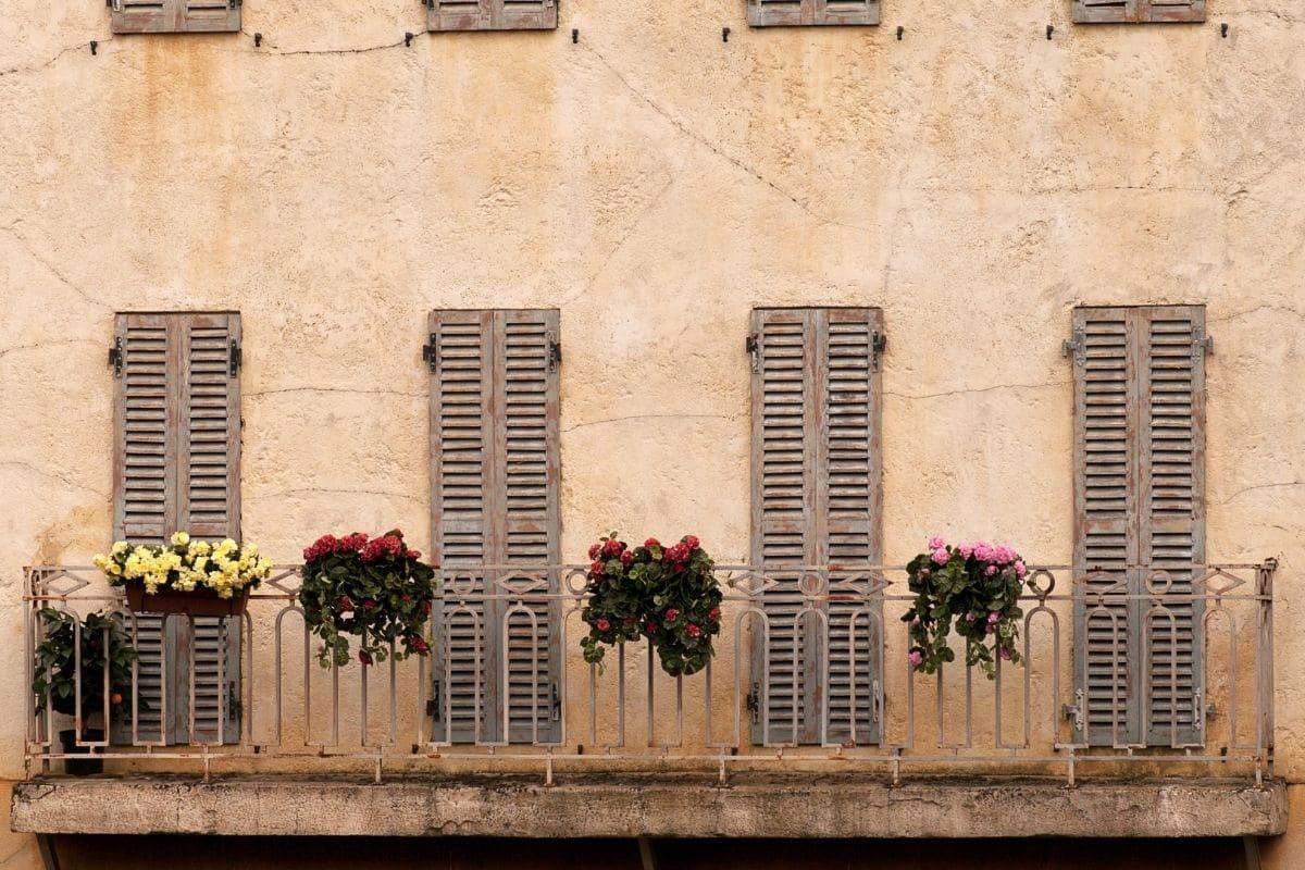 Pariser Fenster mit Blumen