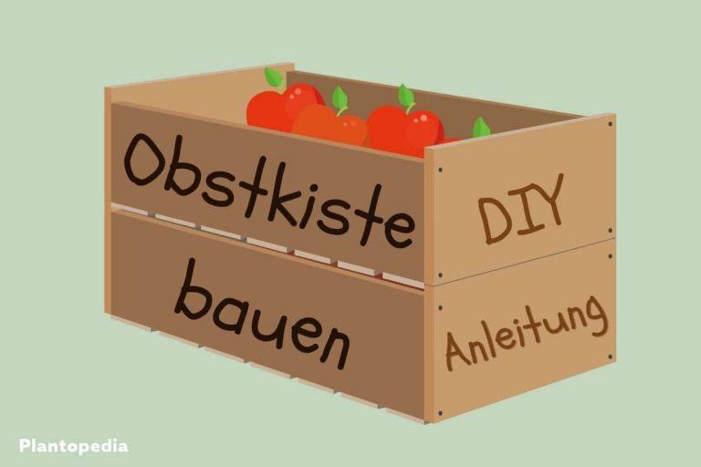 Anleitung Obstkiste bauen - Titel