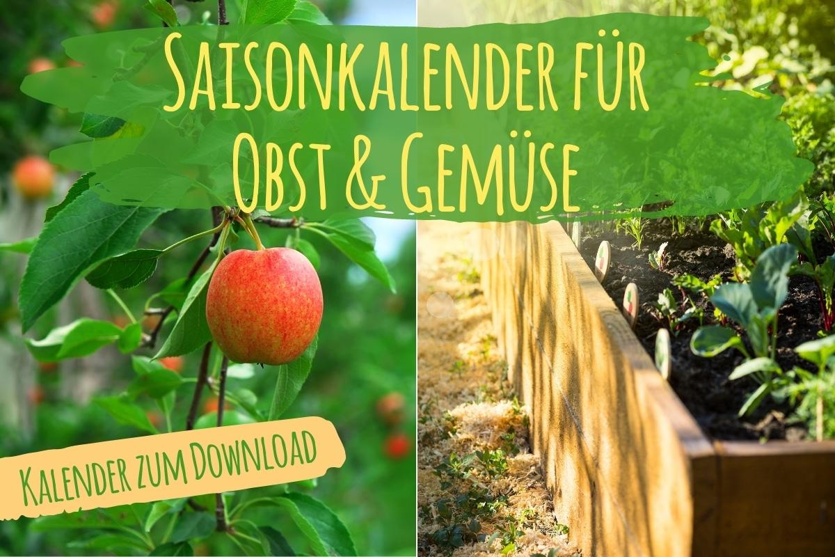 Saisonkalender für Obst & Gemüse - Titel