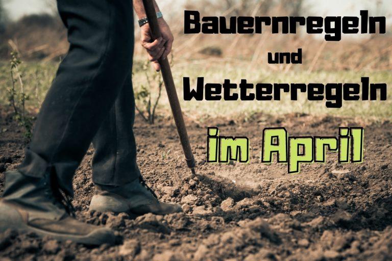 31 Bauernregeln & Wetter im April - Titelbild