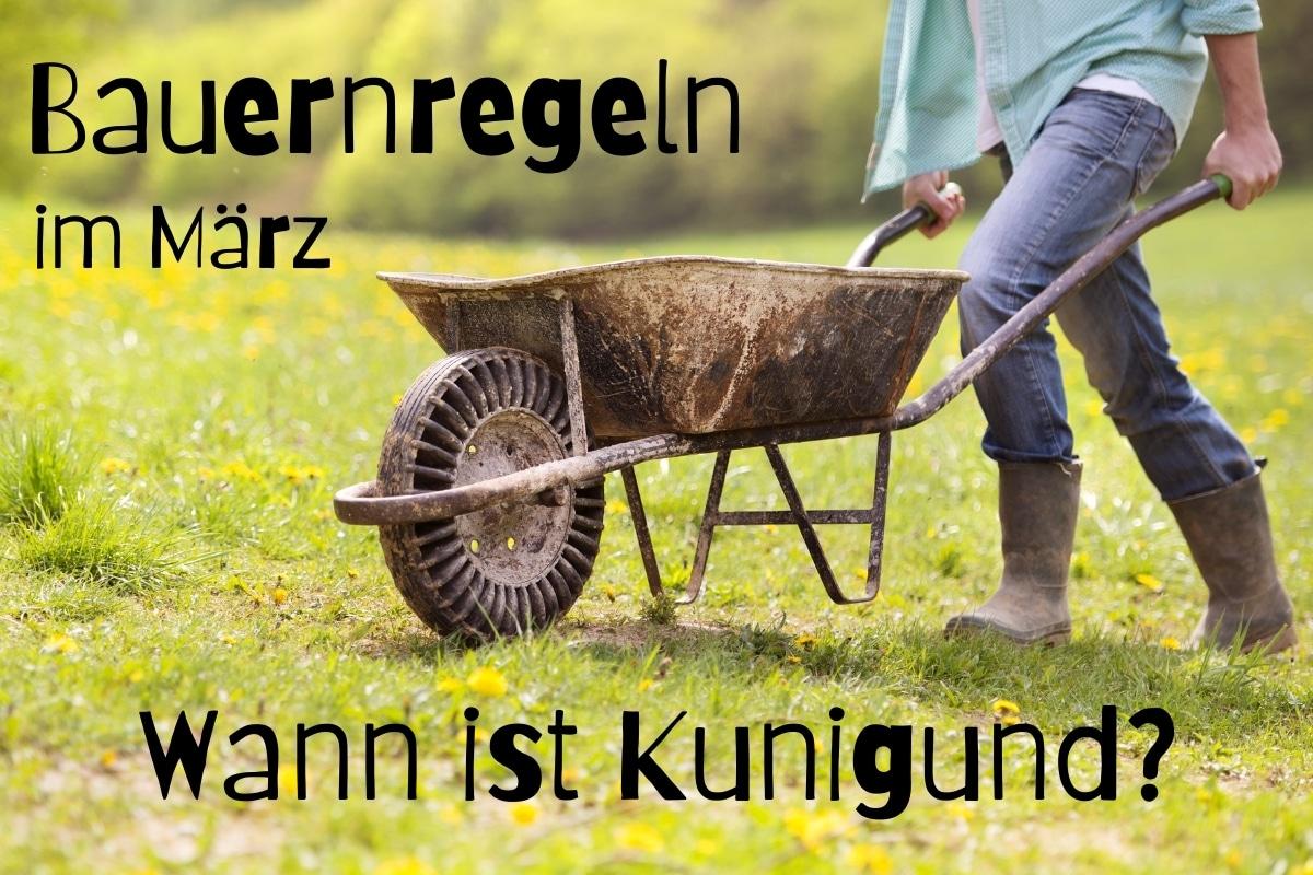 Bauernregeln im März I Wann ist Kunigund? - Titelbild