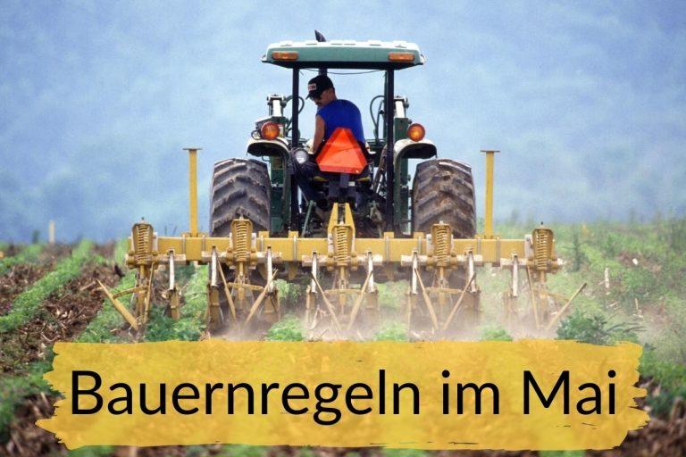 Bauernregeln im Mai - Titelbild