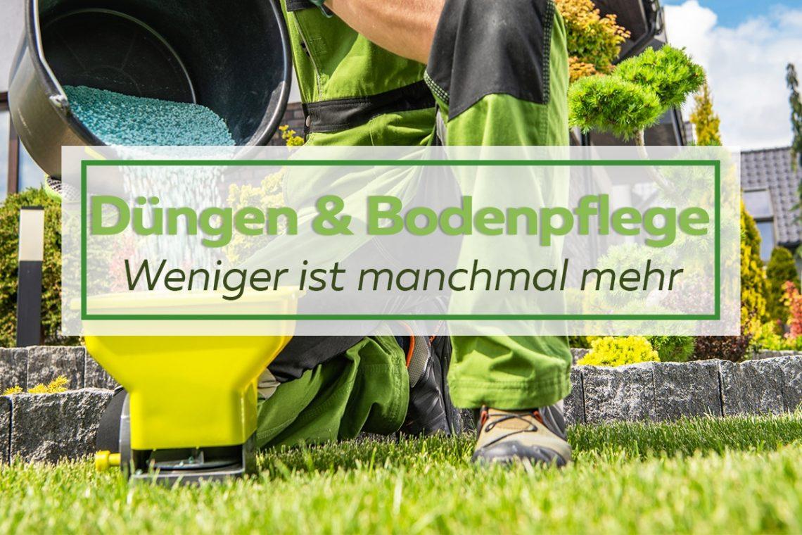 Düngen & Bodenpflege