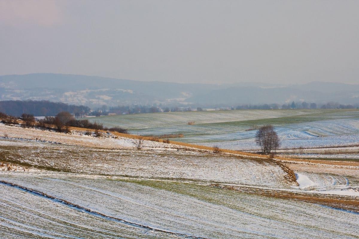 Wetter im März