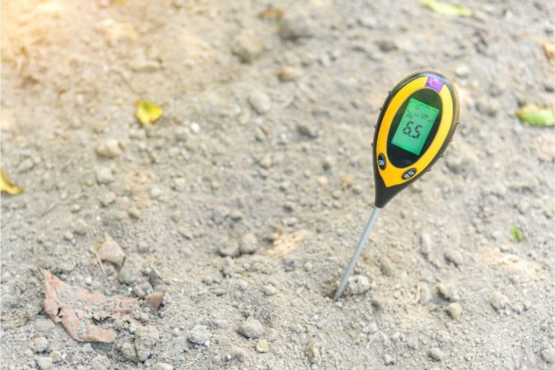 Bodenqualität bestimmen - pH-Wert des Bodens messen